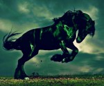 Horse-year-2014-wallpapers (16)