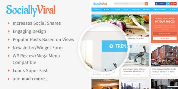 SociallyViral-mythemeshop