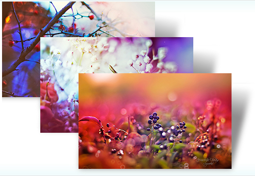 Get free Dreamgarden theme