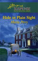 Hide in Plain Sight 1
