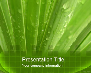 free template, powerpoint template, ms powerpoint, natural template