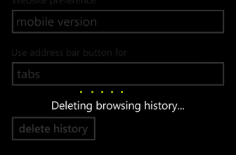 windows phone 8, windows phone 8 tips, windows phone tips, browser, Delete Browsing History