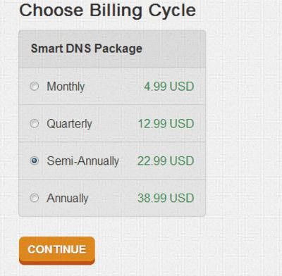 Choose Billing Cycle - SmartyDNS