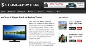 Affiliate Review Theme_2013_black friday