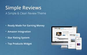 Simple Reviews Responsive Theme_2013_black friday