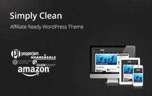 Simply Clean WordPress Theme_2013_black friday