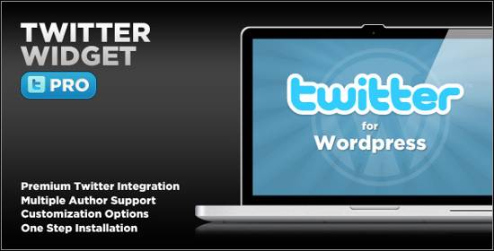Wordpress Plugin-Twitter Widget Pro