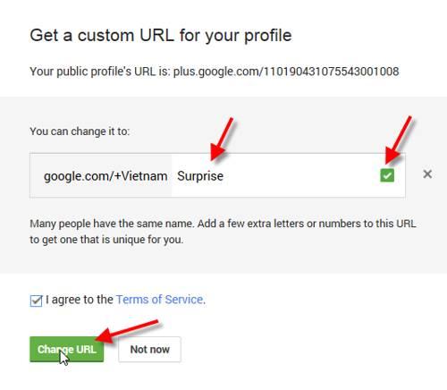 custom url for google+