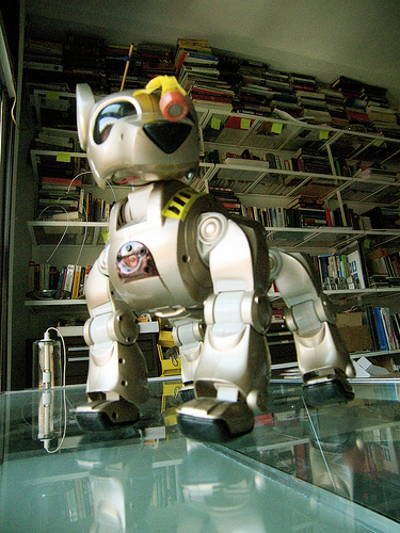 Robotic Attack Dog