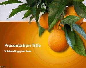 Orange Tree PowerPoint Template is FREE for dowloading