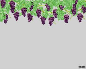 Grapes PowerPoint is FREE for downloading