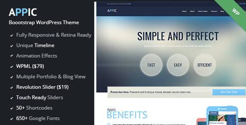 Appic-technology responsive wordpress theme