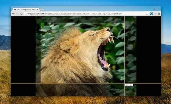 Snagit Extension - Free screen capture tool for Google Chrome
