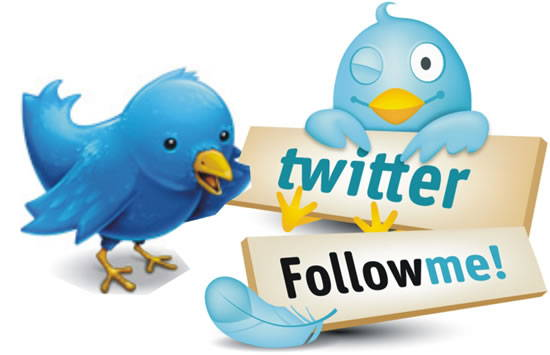 Tips for Maximizing Your Results When Buying Twitter Followers