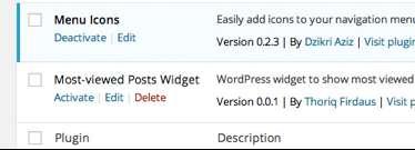 add icon in WordPress menu 21