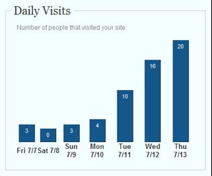 Website Traffic visit