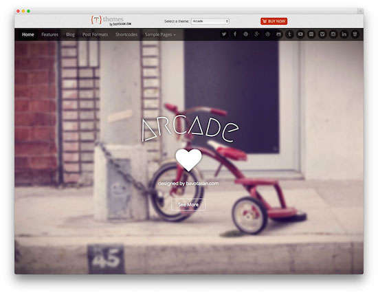 free wordpress theme-Arcade Basic
