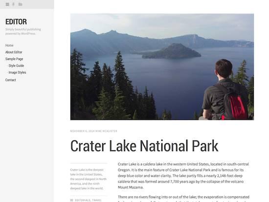 Editor-free wordpress theme 2014