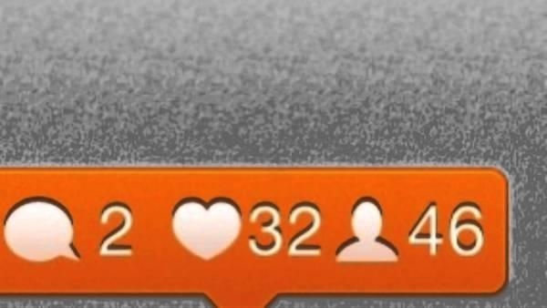 Instagram Followers 5